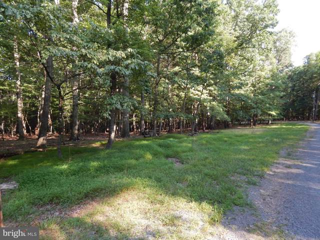 103A Sideling Mountain Trail, GREAT CACAPON, WV 25422 (#WVMO115762) :: AJ Team Realty