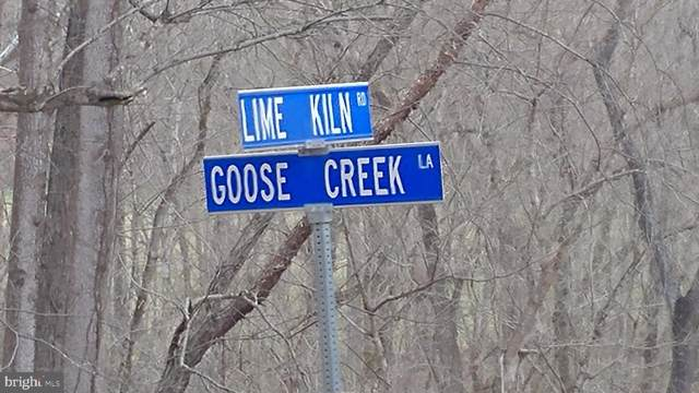 Goose Creek Lane, LEESBURG, VA 20176 (#VALO391550) :: Cristina Dougherty & Associates