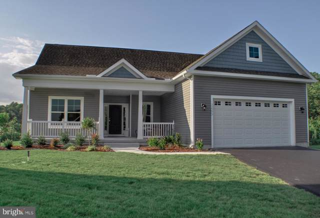 32373 Gypsea Ct, DAGSBORO, DE 19939 (#DESU145268) :: Linda Dale Real Estate Experts