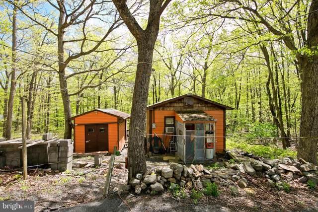 135 Doe Trail, WINCHESTER, VA 22602 (#VAFV152220) :: Viva the Life Properties