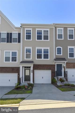 45023 Graduate Terrace, ASHBURN, VA 20147 (#VALO391682) :: Great Falls Great Homes