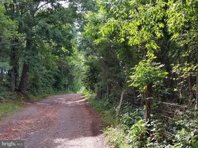 4110 Wild Deer Lane, NORTH GARDEN, VA 22959 (#VAAB101756) :: AJ Team Realty