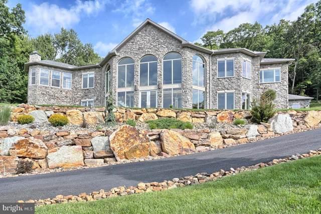 522 Halyard Way, ENOLA, PA 17025 (#PACB116152) :: Liz Hamberger Real Estate Team of KW Keystone Realty