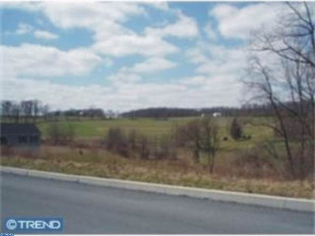 89 Oswald Road, LENHARTSVILLE, PA 19534 (#PABK345864) :: The Dailey Group