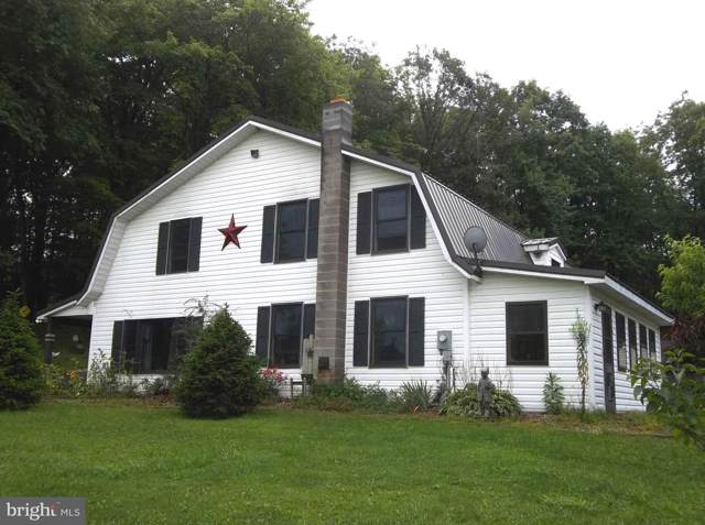 159 Glotfelty Drive, OAKLAND, MD 21550 (#MDGA131146) :: RE/MAX Plus