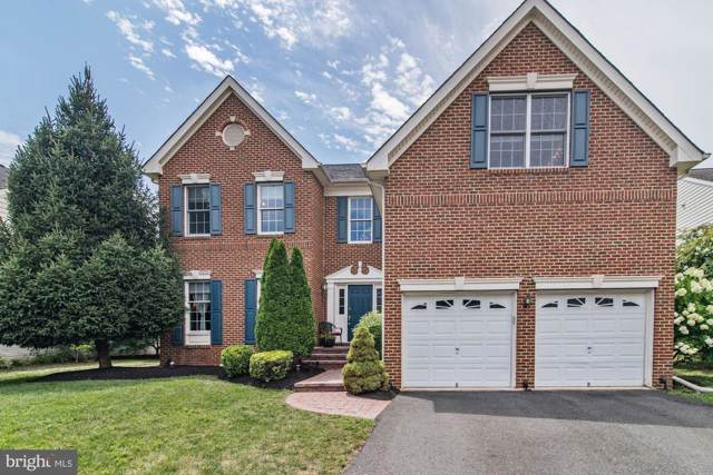 20123 Desert Forest Drive, ASHBURN, VA 20147 (#VALO391960) :: The Gus Anthony Team