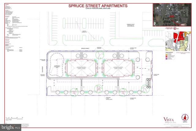 30409 Spruce Street, PRINCESS ANNE, MD 21853 (#MDSO102496) :: Network Realty Group
