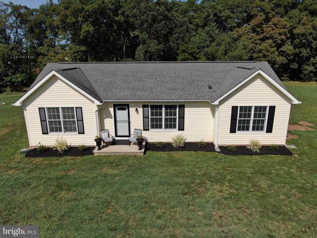 119 Anna Coves Boulevard, MINERAL, VA 23117 (#VALA119694) :: ExecuHome Realty