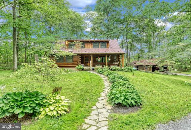 39 Greening Life Lane, SHERMANS DALE, PA 17090 (#PAPY101192) :: The Heather Neidlinger Team With Berkshire Hathaway HomeServices Homesale Realty