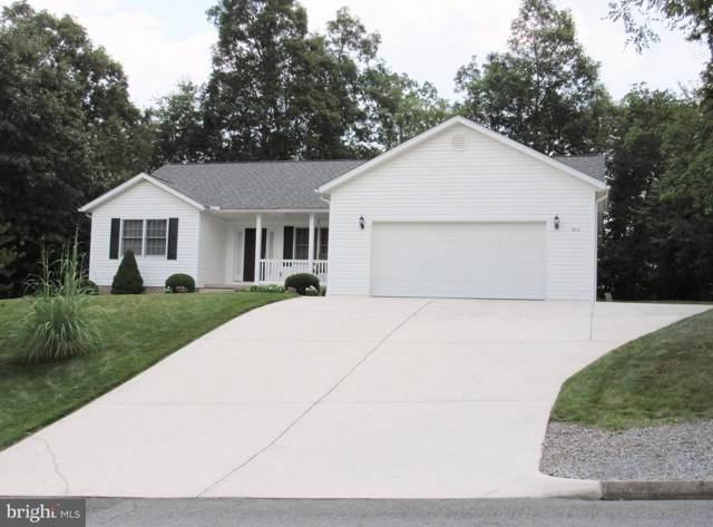 10212 Pin Oak Court, ELLERSLIE, MD 21529 (#MDAL132410) :: Keller Williams Pat Hiban Real Estate Group