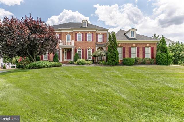 18700 Riverlook Court, LEESBURG, VA 20176 (#VALO392206) :: Peter Knapp Realty Group