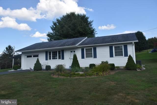 339 Wynonah Drive, AUBURN, PA 17922 (#PASK127246) :: The Joy Daniels Real Estate Group