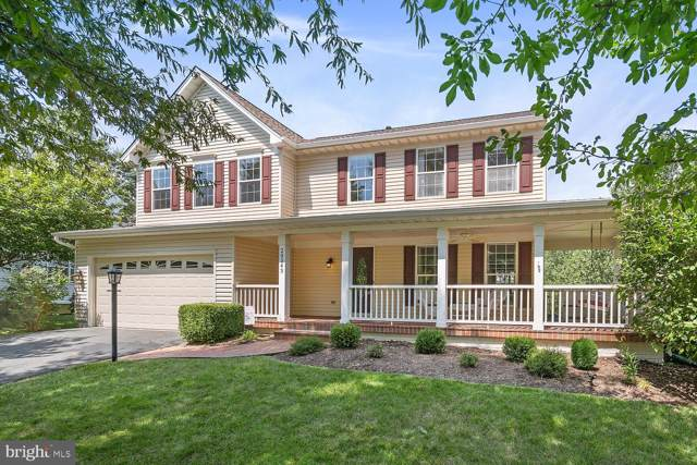 20343 Flushing Meadows Court, ASHBURN, VA 20147 (#VALO392278) :: Network Realty Group