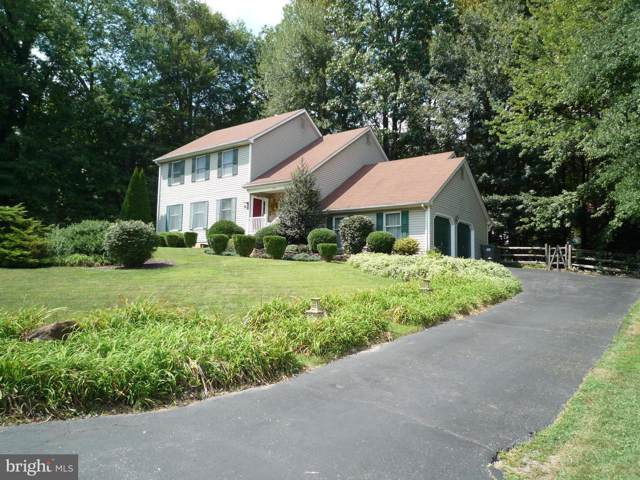 699 Springcreek Court, NEWARK, DE 19702 (#DENC484784) :: RE/MAX Coast and Country
