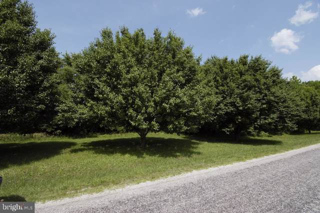 LOT 30X Bushfield Rd, MONTROSS, VA 22520 (#VAWE115010) :: RE/MAX Cornerstone Realty
