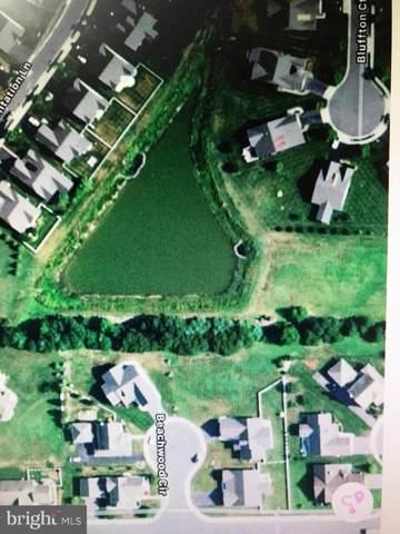 30170 Beachwood Circle, DAGSBORO, DE 19939 (#DESU145840) :: Shamrock Realty Group, Inc