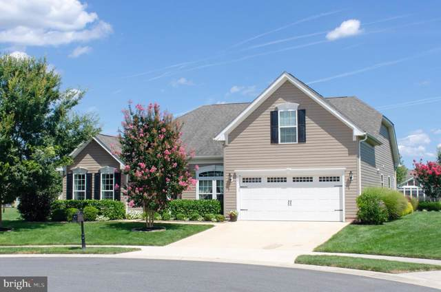 60 Ruddy Duck Lane, BRIDGEVILLE, DE 19933 (#DESU145854) :: Atlantic Shores Realty