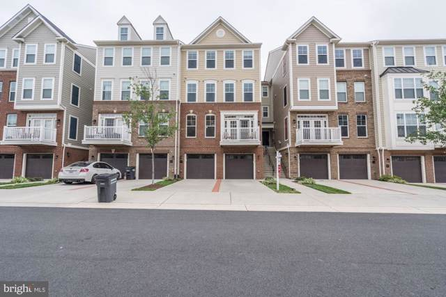 25208 Briargate Terrace, CHANTILLY, VA 20152 (#VALO392370) :: ExecuHome Realty