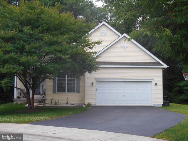 64 Buntings Mill Court, SELBYVILLE, DE 19975 (#DESU145934) :: RE/MAX Coast and Country