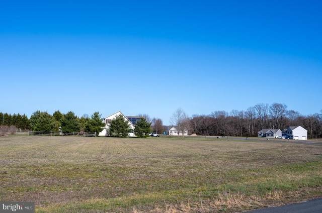 Marshall Drive, CENTREVILLE, MD 21617 (#MDQA141108) :: Bob Lucido Team of Keller Williams Integrity