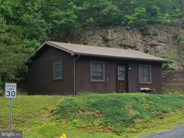 18 Sand Hill Road, ROMNEY, WV 26757 (#WVHS113056) :: Circadian Realty Group
