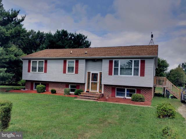 230 Artis Drive, DOVER, DE 19904 (#DEKT231714) :: The Allison Stine Team