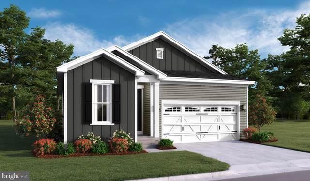 Cedar Springs Dr- Jonquil, STRASBURG, VA 22657 (#VASH116870) :: Circadian Realty Group