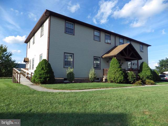 522 & 526 E Main Street, HEGINS, PA 17938 (#PASK127344) :: The Joy Daniels Real Estate Group
