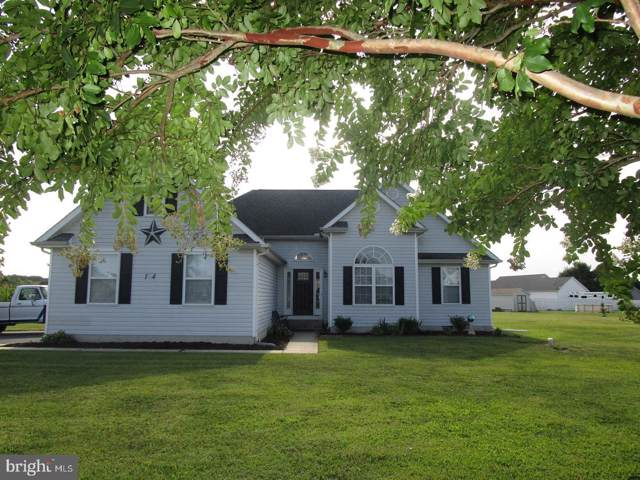 14 Morning Glory Road, MAGNOLIA, DE 19962 (#DEKT231766) :: Linda Dale Real Estate Experts