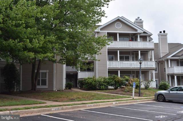 14322 Climbing Rose Way #205, CENTREVILLE, VA 20121 (#VAFX1084066) :: The Redux Group