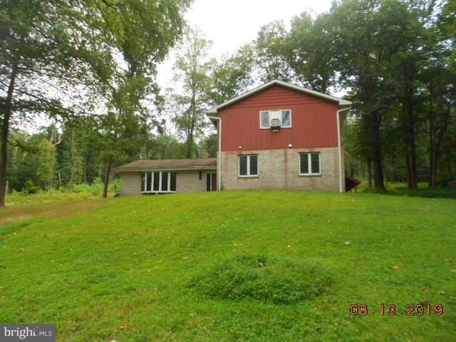 350 Blue Mountain Drive, NEW RINGGOLD, PA 17960 (#PASK127352) :: Ramus Realty Group