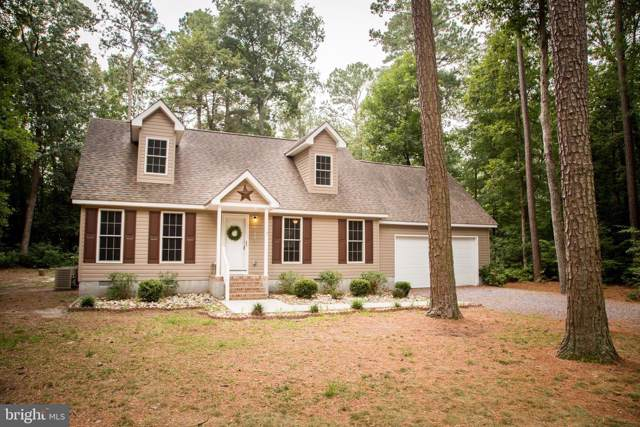 26829 Jade Court, HEBRON, MD 21830 (#MDWC104774) :: Shamrock Realty Group, Inc