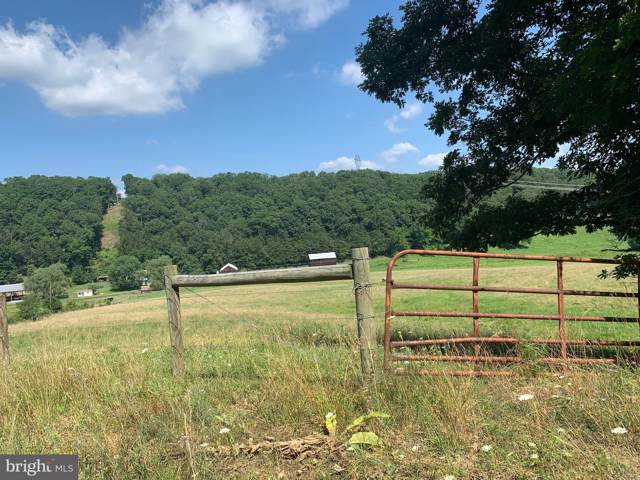 Hazel Lane, CAPON BRIDGE, WV 26711 (#WVHS113072) :: SURE Sales Group
