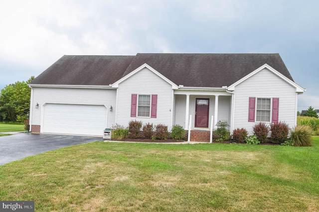 34801 Sandyfield Drive, PITTSVILLE, MD 21850 (#MDWC104780) :: Barrows and Associates