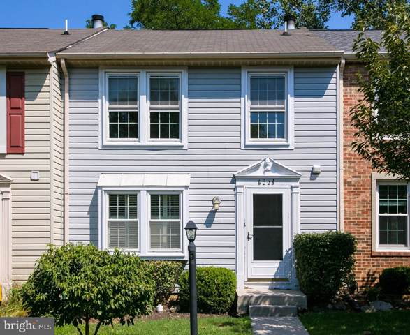 6025 Chicory Place, ALEXANDRIA, VA 22310 (#VAFX1084486) :: RE/MAX Cornerstone Realty