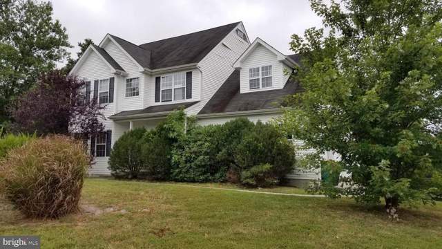 300 Meadows Drive, GALLOWAY, NJ 08205 (#NJAC111250) :: Viva the Life Properties