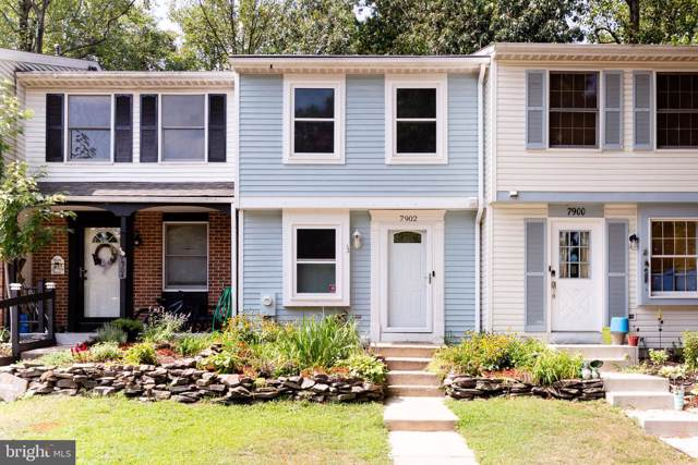 7902 Sutherland Court, PASADENA, MD 21122 (#MDAA410540) :: The Sebeck Team of RE/MAX Preferred
