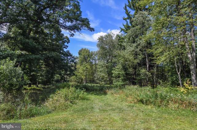Lot 20 Boyd Paugh Lane, OAKLAND, MD 21550 (#MDGA131226) :: HergGroup Horizon