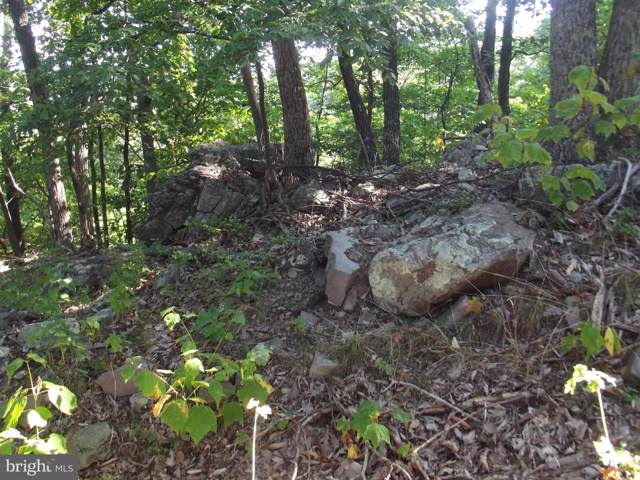Lot 342 Nathaniel Mountain Road, MOOREFIELD, WV 26836 (#WVHD105424) :: Advance Realty Bel Air, Inc