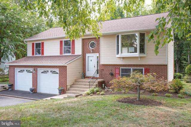 257 Vine Place, STAFFORD, VA 22554 (#VAST214328) :: Keller Williams Pat Hiban Real Estate Group