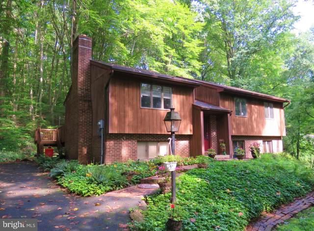 46 Speck Road, MOHNTON, PA 19540 (#PABK346604) :: Tessier Real Estate