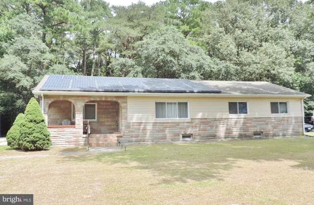 219 Morris Drive, SALISBURY, MD 21804 (#MDWC104790) :: Great Falls Great Homes