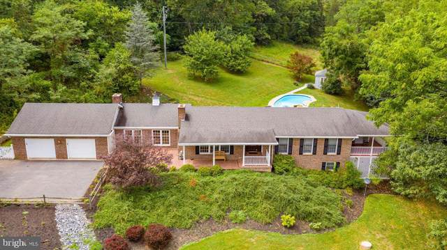 1243 Tea Berry Road, MAURERTOWN, VA 22644 (#VASH116910) :: ExecuHome Realty