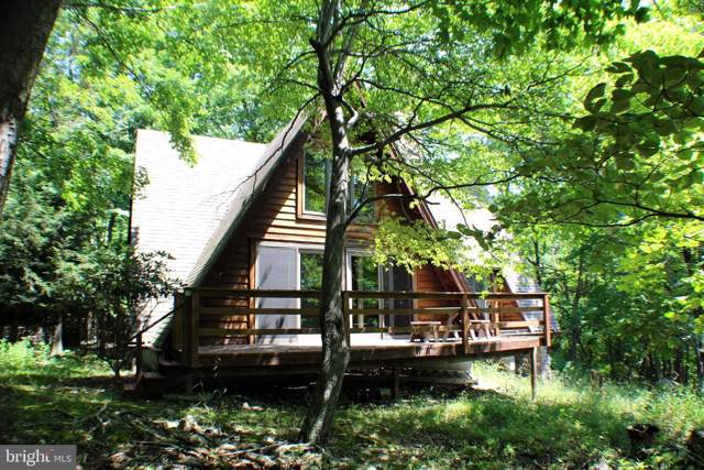 451 Little Mountain Road, CABINS, WV 26855 (#WVGT102964) :: Pearson Smith Realty
