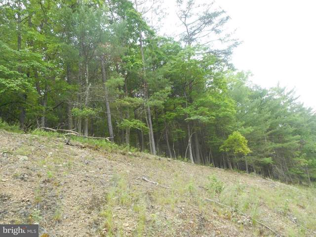 Doe Run Court, ROMNEY, WV 26757 (#WVHS113082) :: Circadian Realty Group