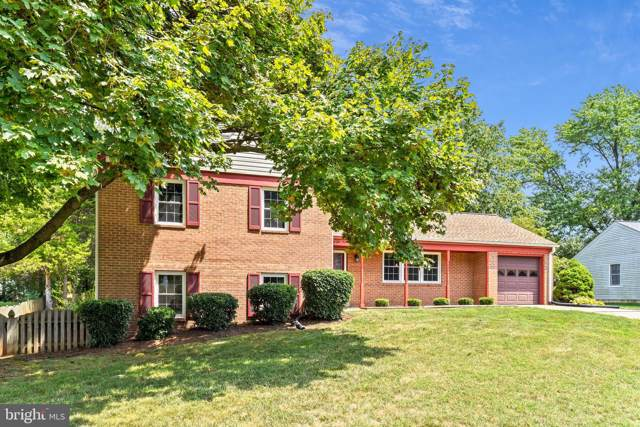 4517 Briarton Drive, CHANTILLY, VA 20151 (#VAFX1084782) :: Cristina Dougherty & Associates