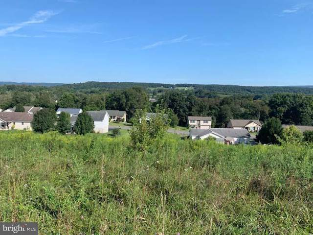Lot 10 Ginger Lane, MIFFLINTOWN, PA 17059 (#PAJT100442) :: The Jim Powers Team
