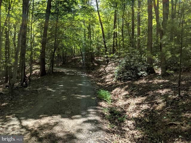 TM 38-20 Ruth Hollow Fire Trail, MADISON, VA 22727 (#VAMA107888) :: Charis Realty Group