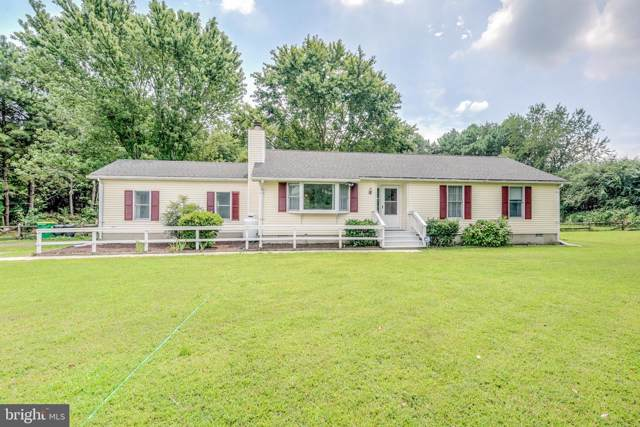 8255 New Bridge Road, DENTON, MD 21629 (#MDCM122872) :: Bob Lucido Team of Keller Williams Integrity
