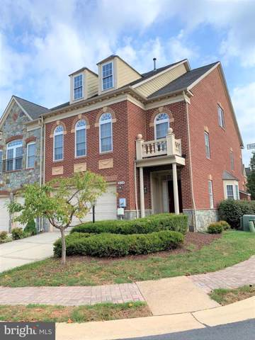 18334 Buccaneer Terrace, LEESBURG, VA 20176 (#VALO392998) :: Labrador Real Estate Team